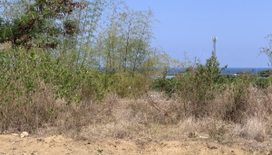 Lot with Ocean View, near the National Highway, Bacnotan, La Union