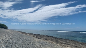 Promising Beach Lot along the Highway, Luna, La Union