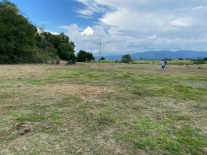 Meadow with Hill Overlooking the Sea Lot For Sale, Bacnotan, La Union