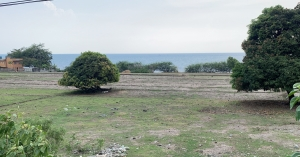 Scenic stretch of land w/fruit trees, along the National Highway, Rabon, Rosario, La Union