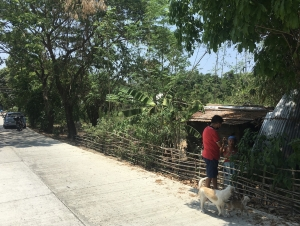 Spacious Lot Near the Beach, San Fernando City, La Union