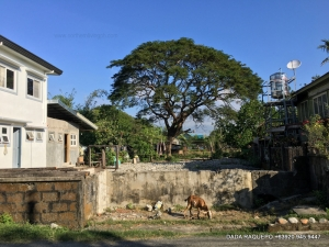 Spacious Lot along the Road near Town Proper, Bacnotan, La Union