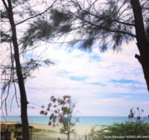 Beach Front Lot, Baroro, Bacnotan, La Union