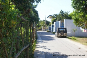 Lot w/ Native Mango Trees, Bacnotan, La Union