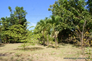 Spacious Lot along Wide Cemented Road, Near Town Proper, Bauang, La Union