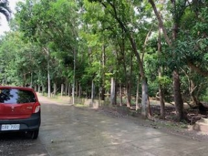Residential Lot Along Wide Cemented Road, 5mins to Town Proper, San Fernando City, La Union