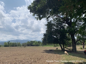 Agricultural Lot with Road Access, Naguirangan, San Juan, La Union