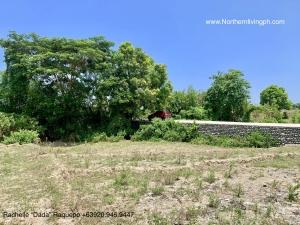 Farm Along Wide Cemented Road, San Felipe, San Juan, La Union
